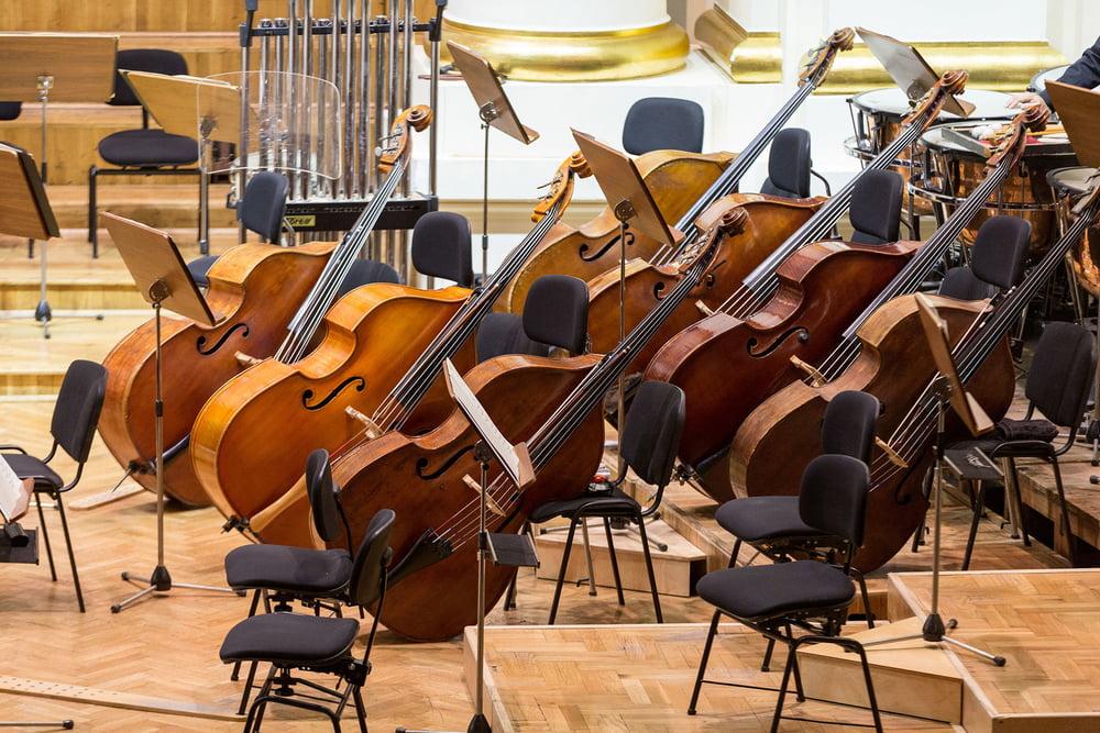 Der Kontrabass im Orchester