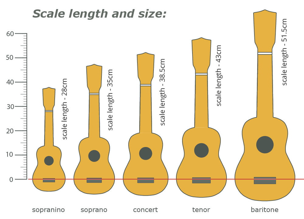 scale length and size