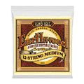 Ernie Ball 2012 Earthwood Bronze