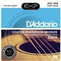 8. Daddario EXP16