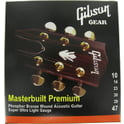 16. Gibson MB10