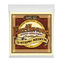 9. Ernie Ball 2012 Earthwood Bronze