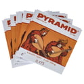 40. Pyramid Baroque Guitar Strings