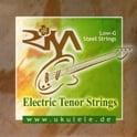 27. Risa STRISAST-T String Set