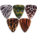 20. Grover Allman Animal Print Picks