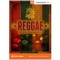 199. Toontrack EZX Reggae