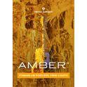 449. ujam Virtual Guitarist Amber
