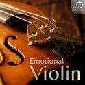 263. Best Service Emotional Violin Crossgrade