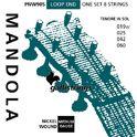 Galli Strings PNW90S Mandola Strings Medium