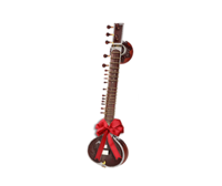 Gifts for world music musicians