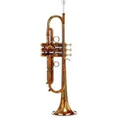 Carol Brass CTR-4440L-PSM-Bb-AL