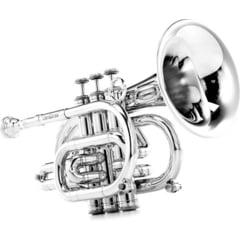 Carol Brass CPT-3000-GLS-Bb-S