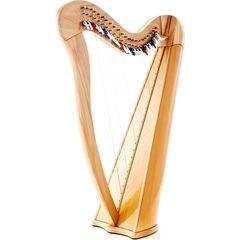 Roth & Junius Aurora 22NB Lever Harp