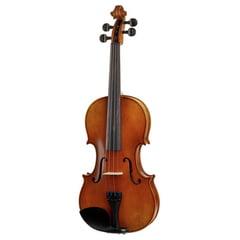 Karl Höfner Allegro 4/4 Violin Outfit