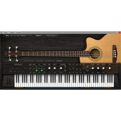 Ample Sound Ample Bass Acoustic III