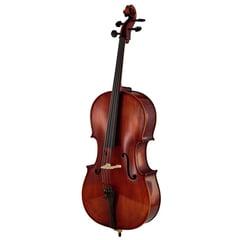 Rainer W. Leonhardt No. 60/1 Master Cello 4/4