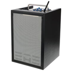 Elite Acoustics D6-8 Acoustic Amplifier