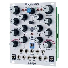 Intellijel Designs Morgasmatron