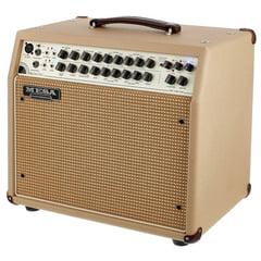 Mesa Boogie Rosette 300 One Ten