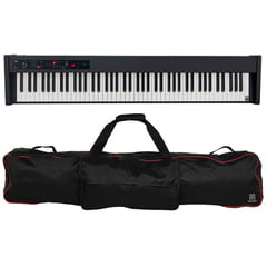 Korg D1 Bag Bundle