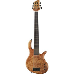 Elrick Gold E-volution 6 BO Spalted