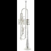 Bach TR 200 S Trumpet