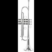 Carol Brass CTR-4000H-YSS-Bb-S