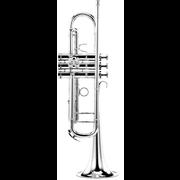 Adams A7 Gold Brass 0,45 Custom SP