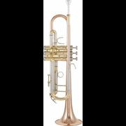 Thomann TR 500 GL Bb-Trumpet
