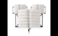 Orkestinstrumenten