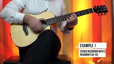 Traveler Guitar - CS-10 - Camper - Spruce Top