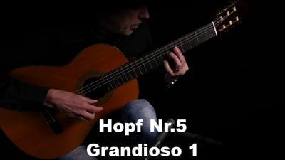 Hopf Nr. 5 Grandioso I